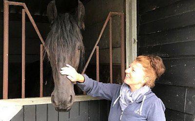 Van balletmeisje naar paardenmeisje