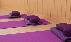 Yogaflow Diana van der Gaast Frankrijk retraite