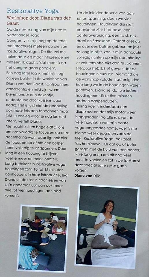 yogaflow recentie Vereniging Yogadocenten Nederland
